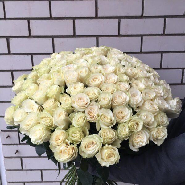 Букет 101 голландская роза 90см