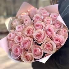 Букет из 25 роз Novia в стильной упаковке